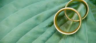 aur reciclabil