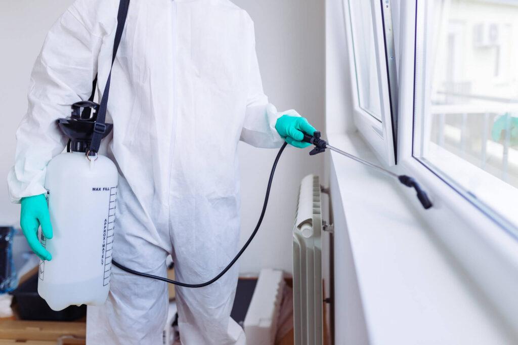 dezinfectie cu profesionisti